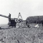 Farm scene in Callaway County, around 1910.