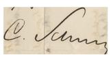 Schurz signature