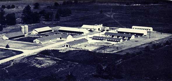 MU Dairy Farm